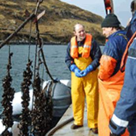 Inspecting longlines