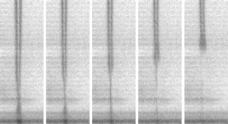 Secondary tail inkjet breakup