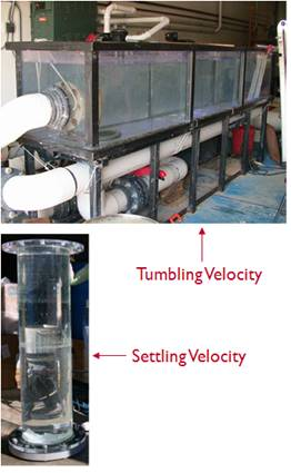 Tumbling and settling velocities
