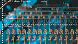 Microfluidic circuit pneumatic latching valve