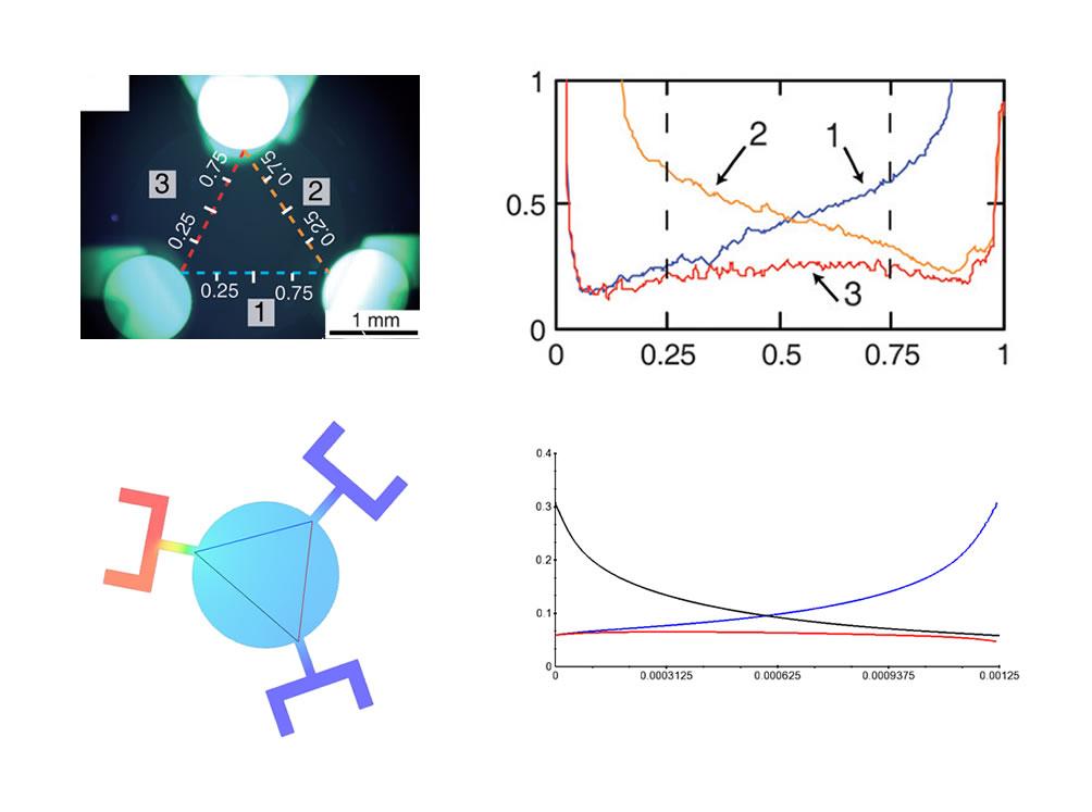 Experimental vs. FLOW3D results