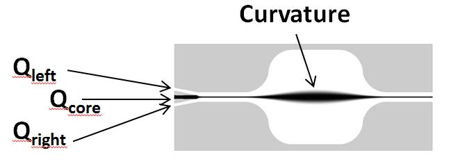 L2 lens curvature