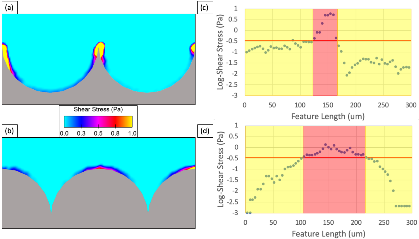 CFD-generated 2D shear stress profiles