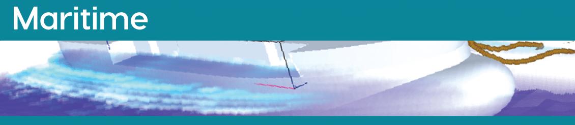 FLOW-3D maritime